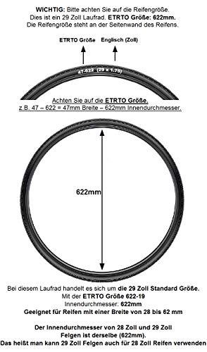Redondo 29 28 Zoll Hinterrad Laufrad Hohlkammer WTB Felge Disc Schwarz - 3