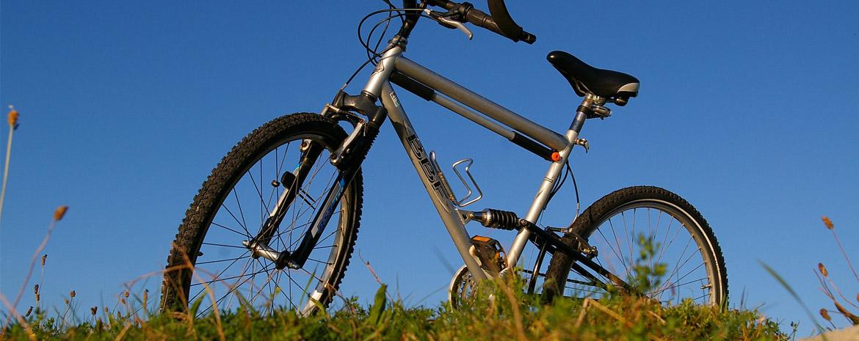 Fahrradfelge 29 Zoll