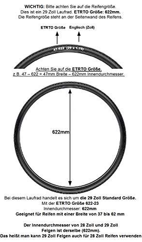 Redondo 29 28 Zoll Vorderrad DH-3D32 Nabendynamo Laufrad WTB Felge Silber Disc - 2
