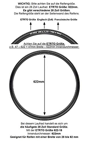 Redondo 28 Zoll Laufrad Set Vorderrad Hinterrad Disc Felge Silber + 8 Fach Kranz - 2